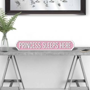 Princess Sleeps Here - Large Vintage Street Sign in Pink and White.