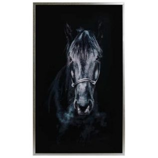 Horse in the Shadows Silver Framed Glass Picture