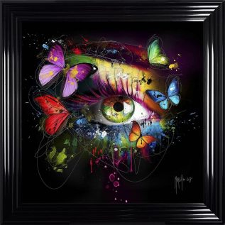 Butterfly Eye Framed Picture.