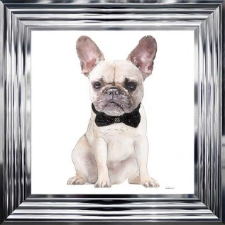 White Frenchie Framed Picture