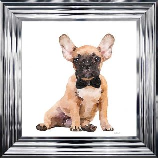 Golden Frenchie Framed Picture