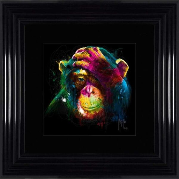 Darwin Monkey Framed Picture by Patrice Murciano
