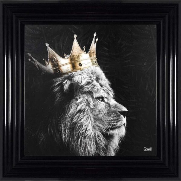 Black and White Royal King Lion Framed Picture