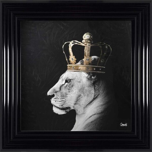 Black and White Royal Queen Lion Framed Picture
